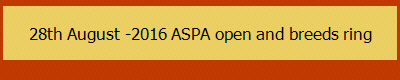 28th August -2016 ASPA open and breeds ring